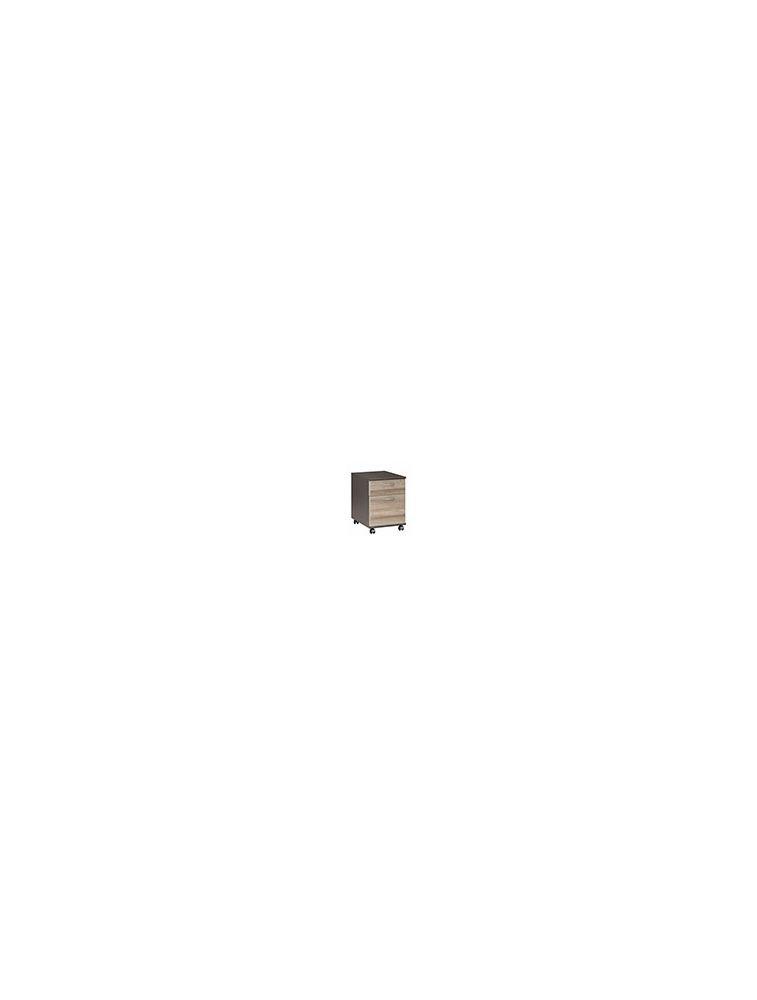 Caisson mobile 2 tiroirs - JAZZ Chêne - GAUTIER